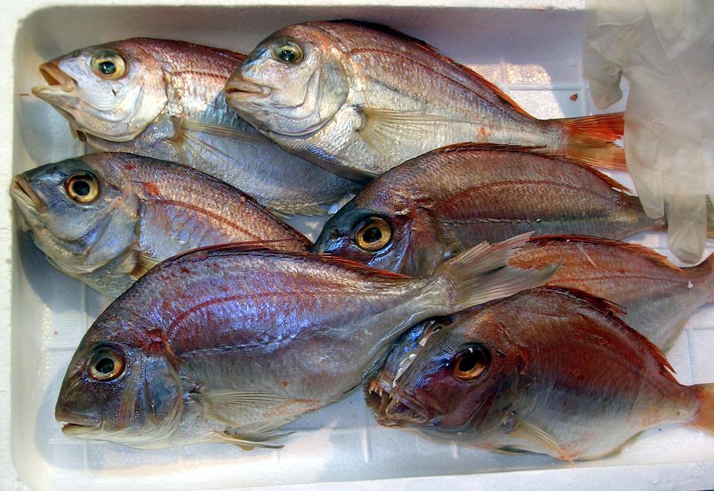 Seth Godin – The Rotten fish problem